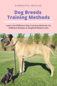 Dog Breeds Training Methods