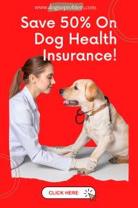 Dog Insurance discount