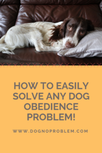 The Definitive Guide for Solving Dog Obedience Problems (Actionable!) 2