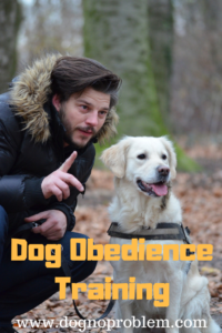 Dog Obedience Training: Become the Pack Leader!