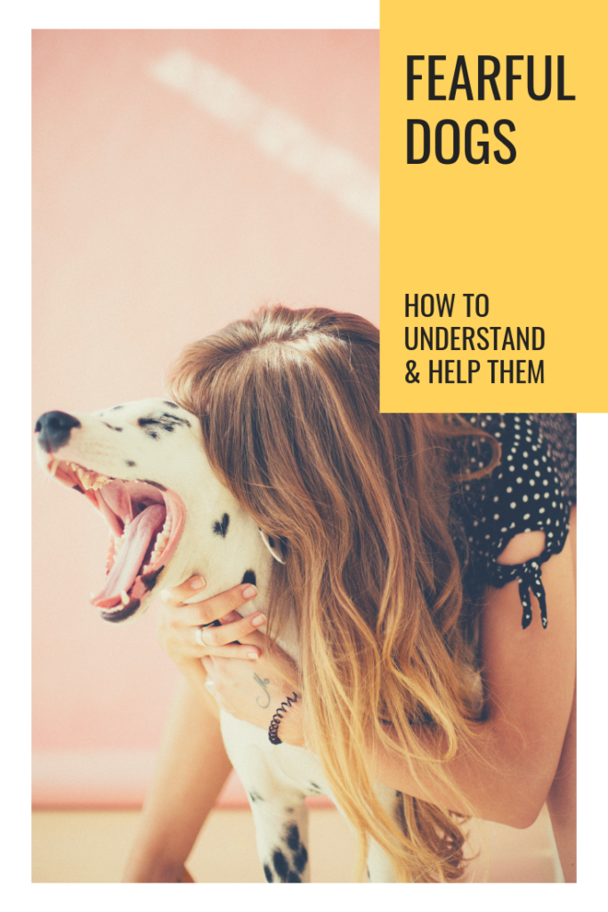 https://dognoproblem.com/fearful-dogs/
