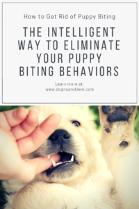 How to Get Rid of Puppy Biting