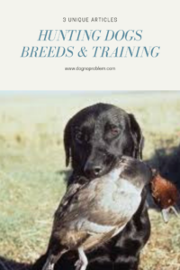 Hunting Dogs Breeds & Training