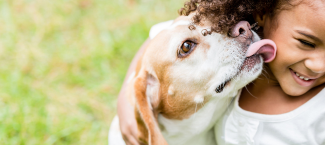 Dogs And Kids: Get Expert Advice in 12 Articles (Many Examples!)