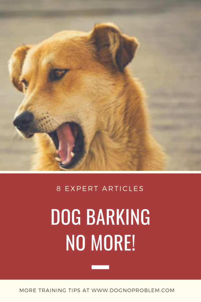 8 Expert Articles on How Stop Dog Barking (Quickly & Easily!)