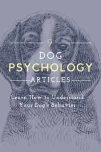 dog psychology