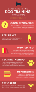 Dog Training Professional