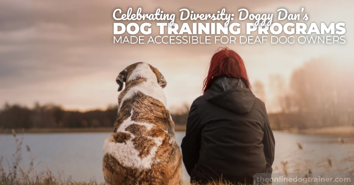 hearing dog training